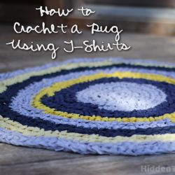 How to Crochet a T-Shirt Rug 250